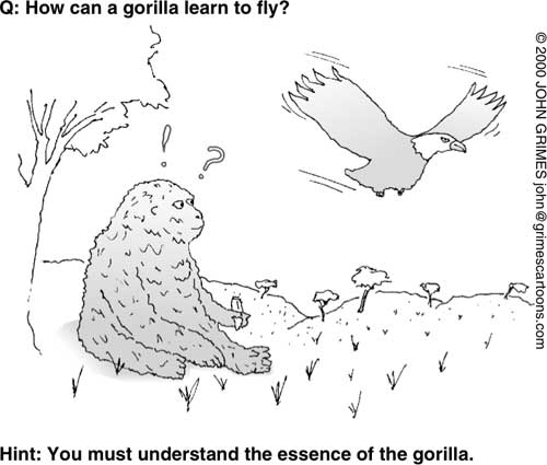 谜语1-大猩猩如何学会飞?